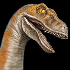3 rossella piccini illustrazione realistica dinosauro 1