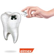 dente illustrazione rossella piccini