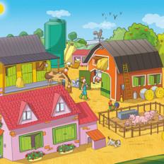 rossella piccini illustrazione fattoria